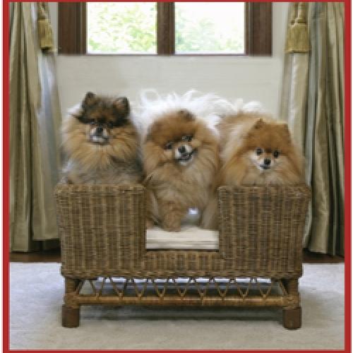 Dog Basket Caneworld